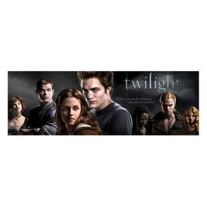 poster twilight achat vente poster twilight pas cher cdiscount. Black Bedroom Furniture Sets. Home Design Ideas