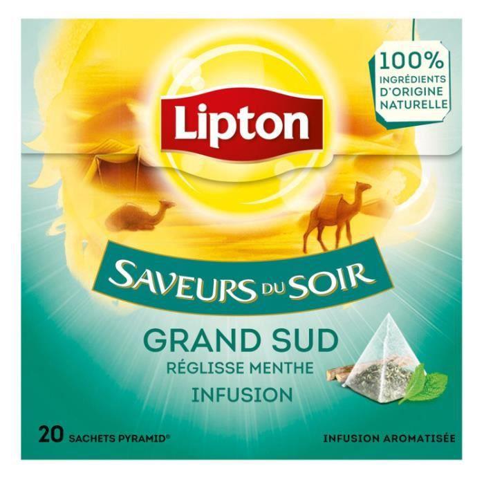 Infusion grand sud pyramide 20 sachets Lipton