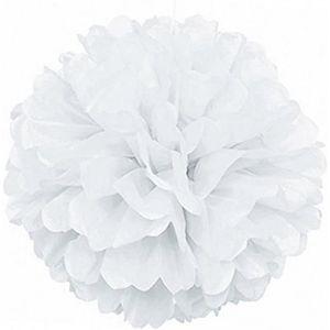 Blanc Boules de Nid dAbeille de Fleur Lanterne de D/éco pour Anniversaire//F/ête//Douche de B/éb/é//D/écoration//Mariage//Maison//Naissance//No/ël Lot de 15 Pompons en Papier de Soie Ext/érieure//Int/érieur