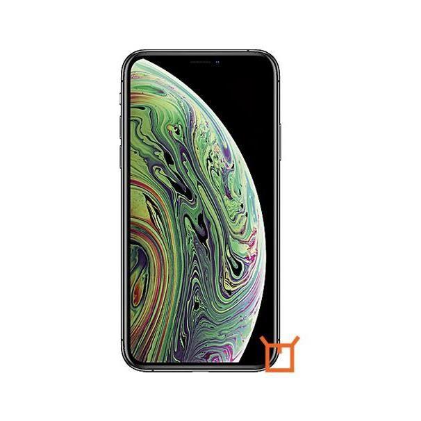 iPhone XS Dual eSIM 64GB Gris
