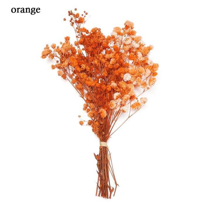 Décoration florale,Mini Bouquet de fleurs décoratives pour bébé,fleurs séchées,plantes naturelles,conservation - Type orange
