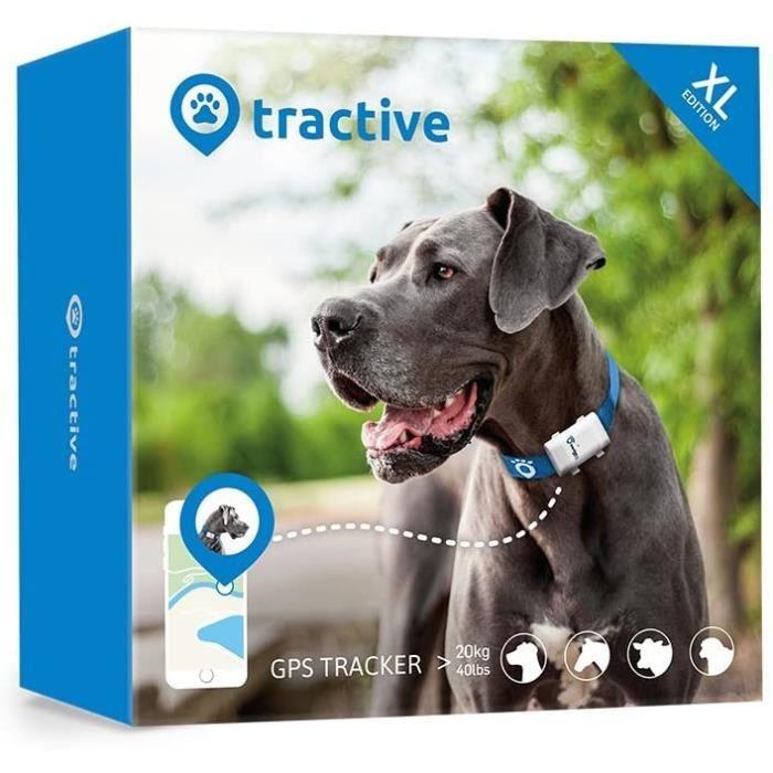 Tractive collier GPS XL pour chien - Traceur GPS avec autonomie de 6 semaines, Portée illimitée