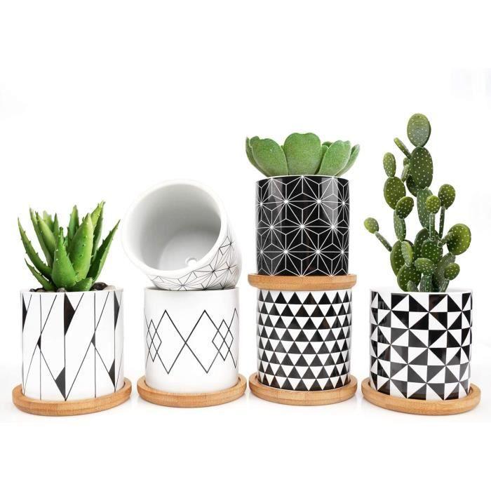 ONEHAUS Lot de 6 mini pots de fleurs-plantes grasses, avec mini coupelle en bambou, 7,3 cm, pour jardin-balcon-bureau-anniversai460