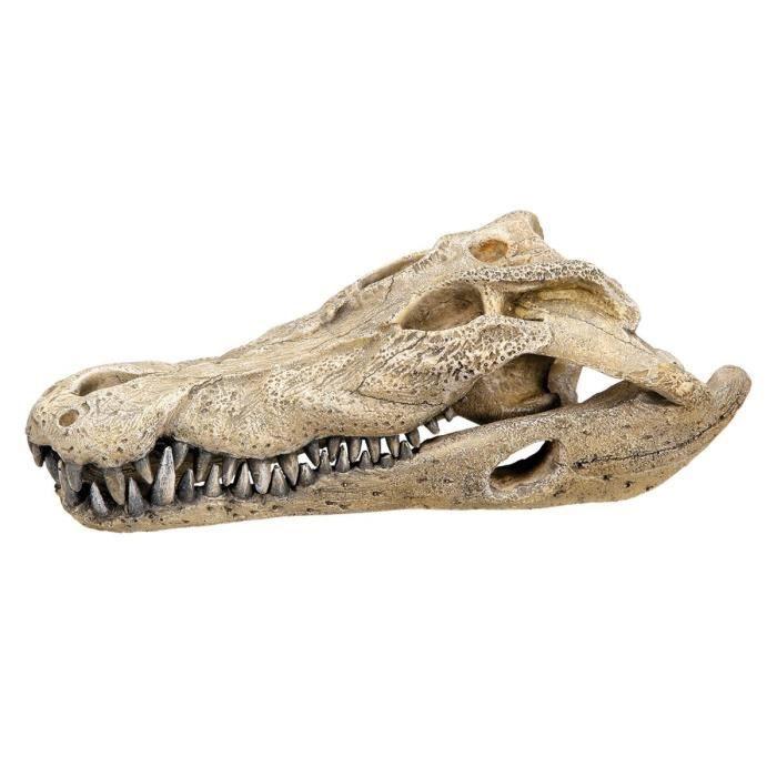 VADIGRAN Aqua Deco Crâne de crocodile - 26 x 14 x 9 cm
