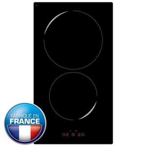 PLAQUE INDUCTION PLAQUE DOMINO INDUCTION 2 FEUX BLACK TRÈS PUISSANT