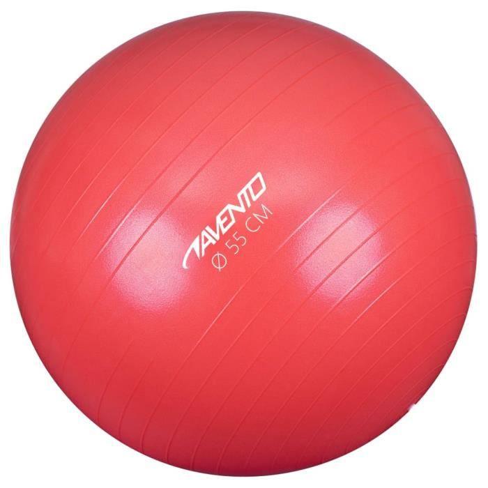 Avento Magnifique-Ballon de fitness-d'exercice Ballon de Gymnastique pour Fitness Exercice Yoga - Diamètre 55 cm Rose♕8183