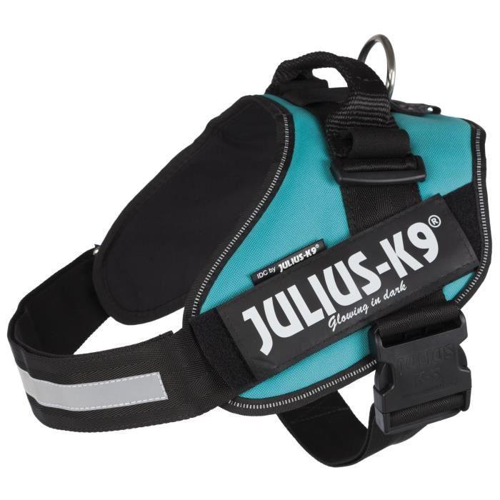 JULIUS-K9 Harnais Power IDC - 2 - L-XL : 71-96 cm-50 mm - Pétrole - Pour chien