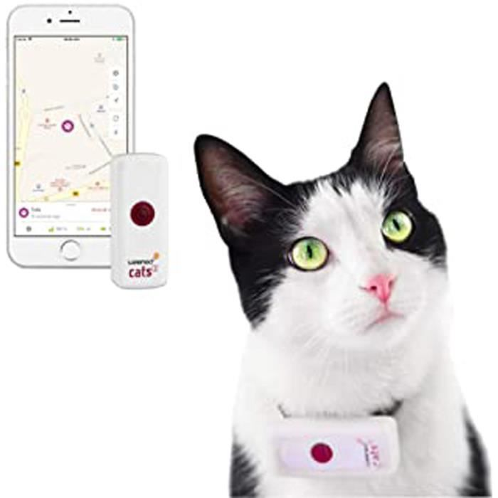 Cats 2 - Le plus petit collier GPS pour chat au monde