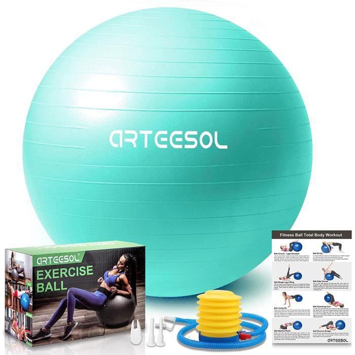 arteesol Ballon Fitness, Swiss Ball, Ballon Grossesse, Ballon Gym Ball Yoga Ballon d'exercice Balle de 45cm-55cm-65cm-75cm-85cm A145