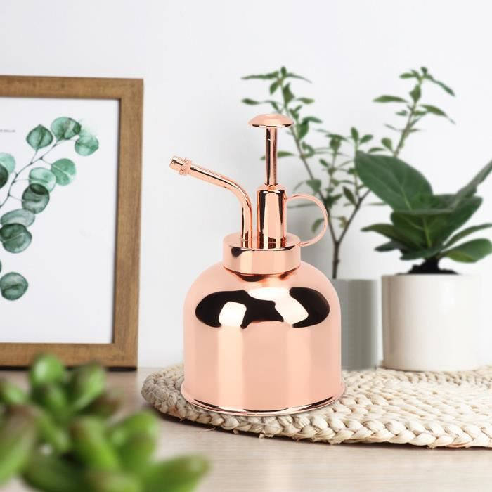 Belle pression de main arrosoir pot vaporisateur de plantes d'intérieur accessoires de plantes d'intérieur-QIN