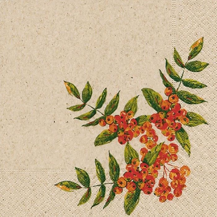 PAPER + DESIGN - 25 Serviettes recyclée 33x33 cm 2 plis roWan berry