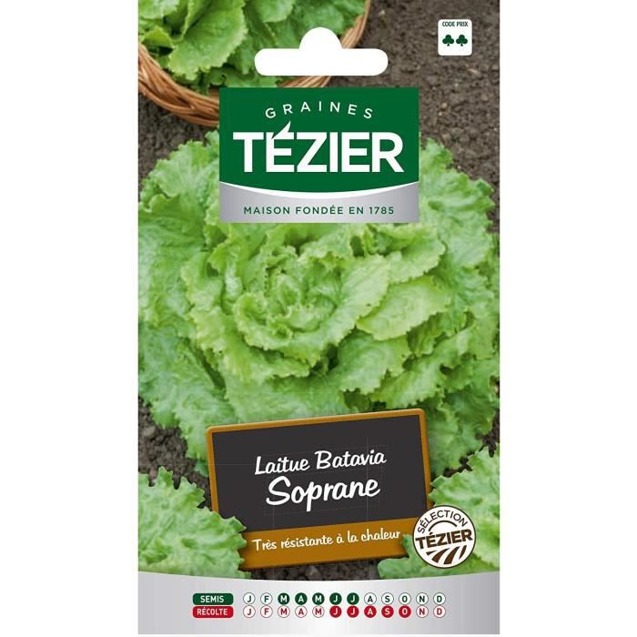 Sachet Graines - Tezier - Laitue Batavia Soprane sélection Tézier (G.B.) - Sachet légume petit modèle - (Mois de semis de 3 à 7)