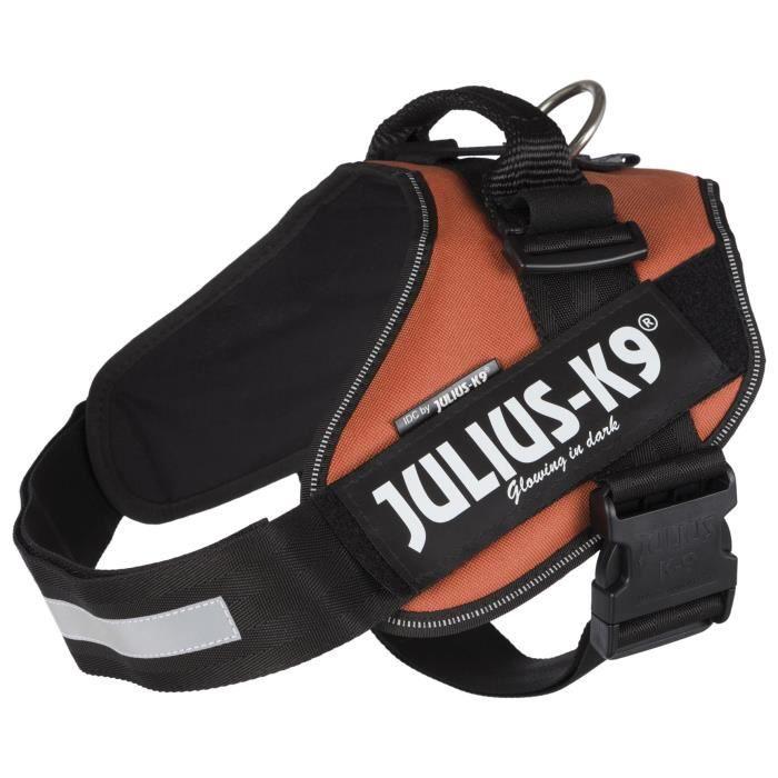 JULIUS-K9 Harnais Power IDC - 2 - L-XL : 71-96 cm-50 mm - Orange cuivré - Pour chien