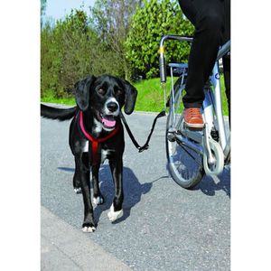 KIT DE TRANSPORT TRIXIE Biker-Set pour grands chiens