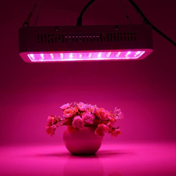 85-265V 600W spectre complet 60 LED plante élèvent la lampe légère pour la culture hydroponique Vegs floraison croissance EU Plug