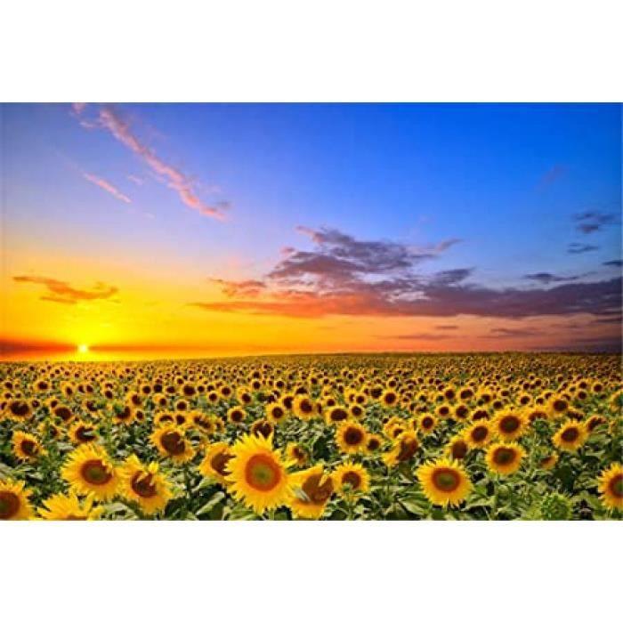 superpower® 1000 pièces fleur de tournesol paysage coucher de soleil de mer adultes jouets en bois jigsaw puzzles famille photo cadr