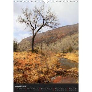 TABLEAU - TOILE CD-40516 - Les arbres témoins du portrait A4