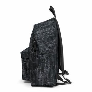 Sac À Authentic Sunday Padded Gris Dos Ek620 Eastpak Pak'r Grey rrSvCqwd