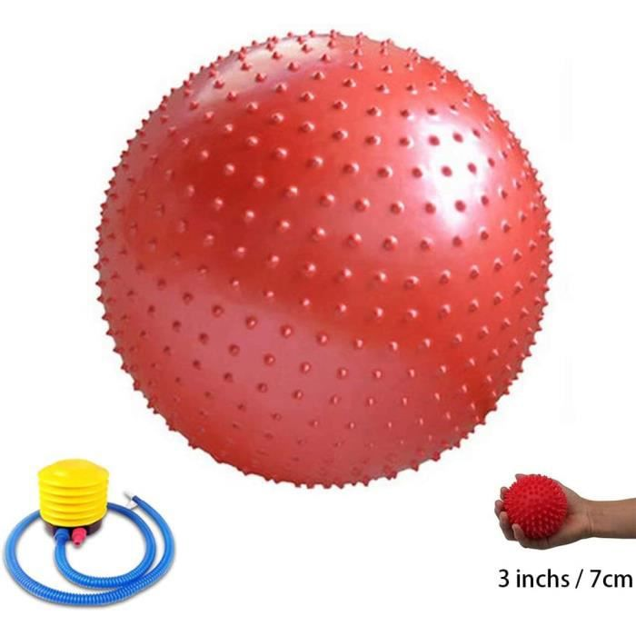 GYM BALL on dexercice 55 cm 65cm 75cm 85cm 95cm Gym Ball Anti Burst Ballon Suisse avec Pompe et Petite Balle de Massage pour516