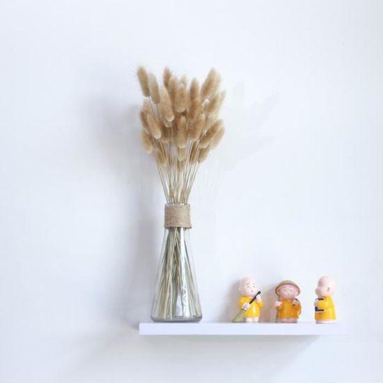 Queue de Lapin Fleur Séchée de 20 Tiges Plantes Naturelles Bouquet D/'Herbes 7T