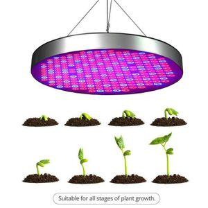 30W 50W 24//48LED Lampe Projecteur Plante Grow Full Spectrum Croissance Culture