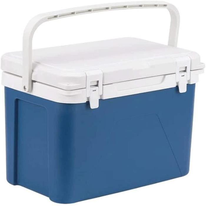 Mini Réfrigérateur 12L Chaud Froid Portable Électrique Glacière Compresseur Réfrigérateur Congélateur pour Voiture, Bateau Et 256