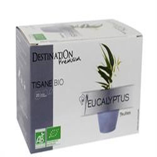Destination Org Infusion Eucalyptus 20