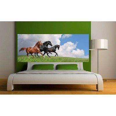 papier peint t te de lit chevaux 3635 dimensions. Black Bedroom Furniture Sets. Home Design Ideas