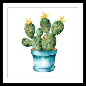 CADRE PHOTO CACTUS Affiche encadrée 50x50cm - Cactus