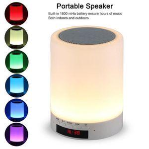 ENCEINTE NOMADE Enceinte Bluetooth Portable,Haut-parleur portatif