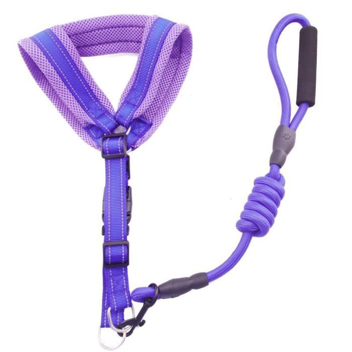 Harnais de course pour chiens en maille qualité - Accessoires pour grands chiens, accessoires pour ani - Modèle: 1 L - FYCWQSB04846