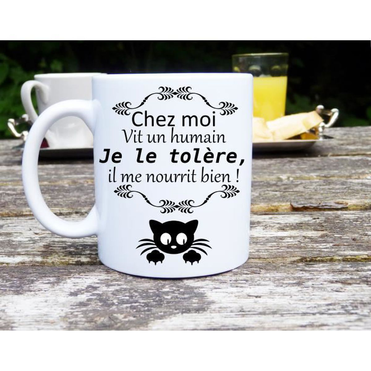mug chat humour chez moi vit un humain id e cadeau passion chat achat vente bol mug. Black Bedroom Furniture Sets. Home Design Ideas