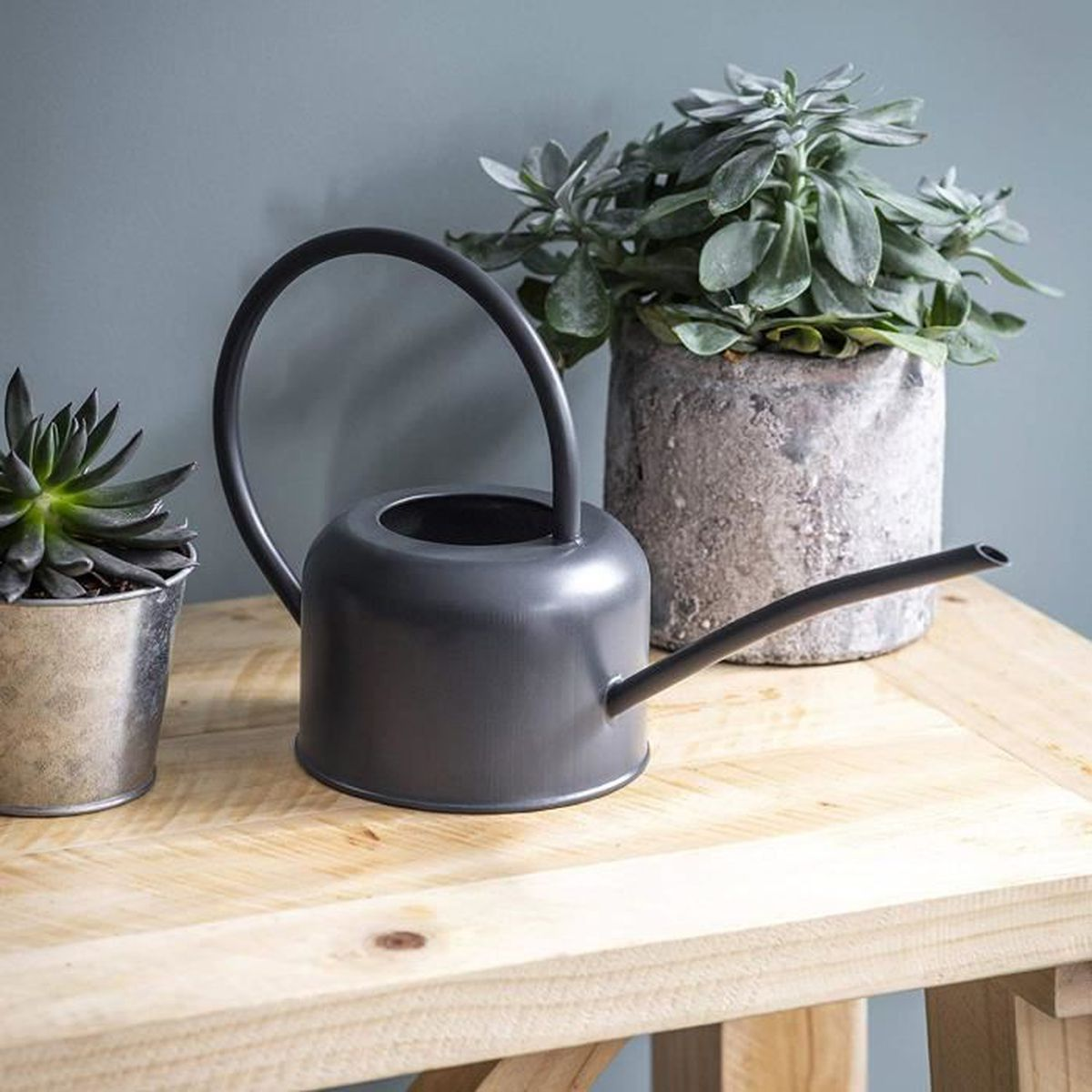 Plantes Pour Jardin Contemporain ckb ltd® arrosoir intérieur en acier galvanisé avec