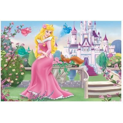 princesse disney la belle au bois dormant achat. Black Bedroom Furniture Sets. Home Design Ideas
