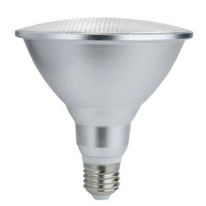 SPOTS - LIGNE DE SPOTS PAR38 RGB Spot Lamp Ampoules Spotlight à changemen