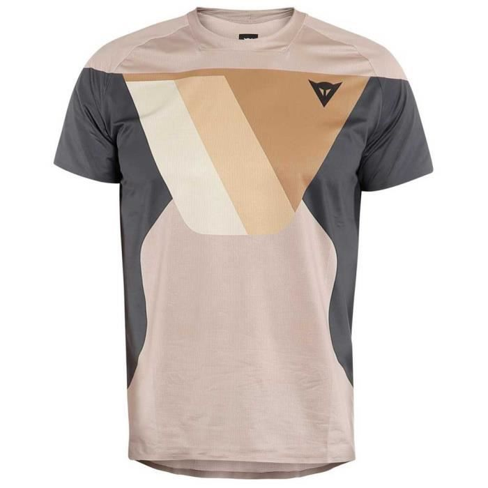 Vêtements Homme T-Shirts Dainese Hg Kaindy