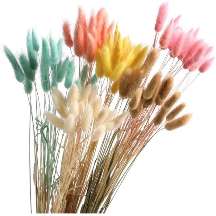 PLANTE ARTIFICIELLE Yw-Flower Herbe De Pampa S&eacutech&eacutee Naturelle, Fleurs De Pampa Color&eacutees Fleurs S&eacutech&174