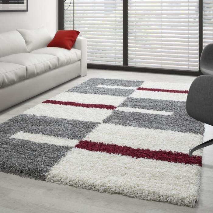 Tapis Gala Shaggy designe pile longue Gris-Blanc-Rouge (140x200 cm)