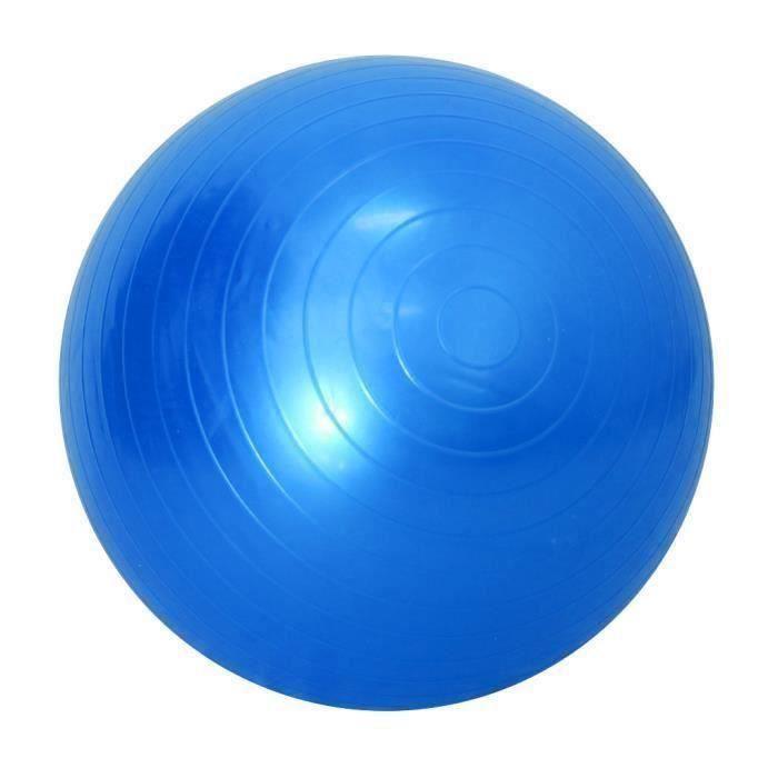 SHAN 45-85 Cm Soft Ballon De Yoga Anti-Eclat Exercice Gym Balles De Pilates 45Cm Bleu