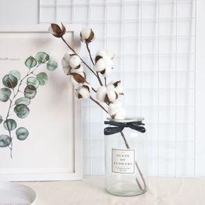 FLEUR ARTIFICIELLE Coton séchés naturellement Potences Ferme de fleur
