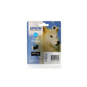 CARTOUCHE IMPRIMANTE Epson Stylus Photo R 2880 - Original Epson C13T096