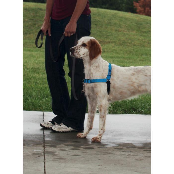 EASY WALK Harnais Deluxe M - Bleu Océan - Pour chien