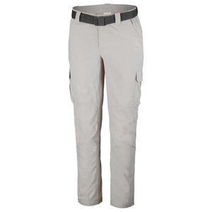 Vêtements Homme Pantalons Columbia Silver Ridge Ii Cargo