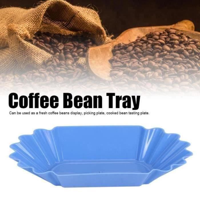 FLY29520-Nourriture PP grains café échantillon plateau affichage plat récipient accessoires domicile en plastique (bleu clair)