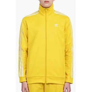 jogging jaune adidas homme