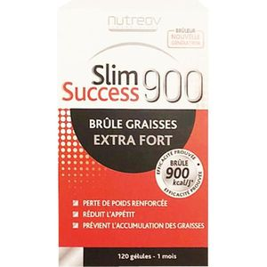 COMPLÉMENT MINCEUR slim success 900 extra fort 120 gelules brule grai