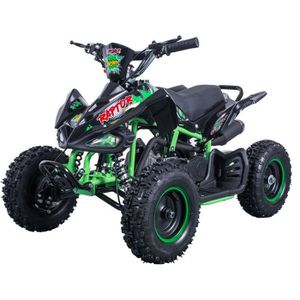 QUAD E-ROAD Pocket Quad 49.9 cc - Vert