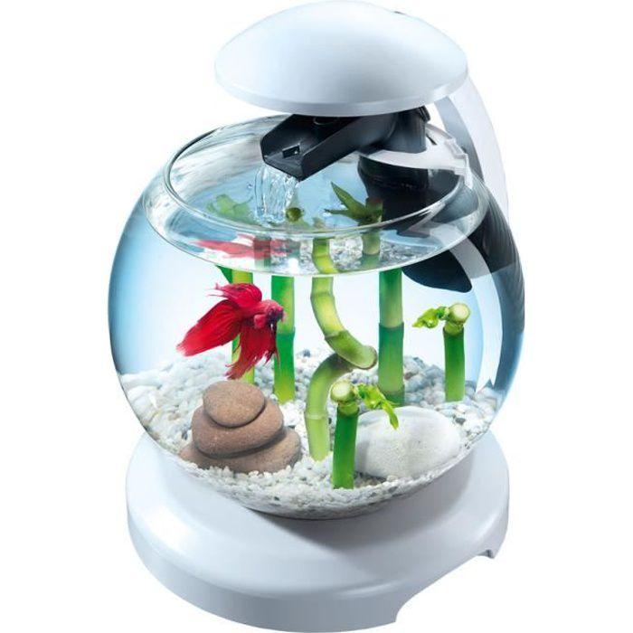 Aquarium Tetra Cascade Globe Blanc