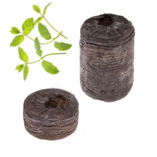 Kit de 2 capsules pr/êt /à pousser avec graines de Thym Tregren Kit de graines Thym pour Potager dint/érieur autonome R/écoltez vos herbes aromatiques /à la maison en quelques semaines et sans effort!
