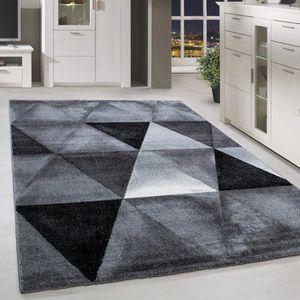 TAPIS Tapis design moderne avec tapis en poils courts et